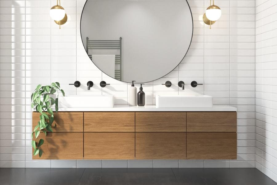 Scegliere le piante per il bagno: Aloe Vera