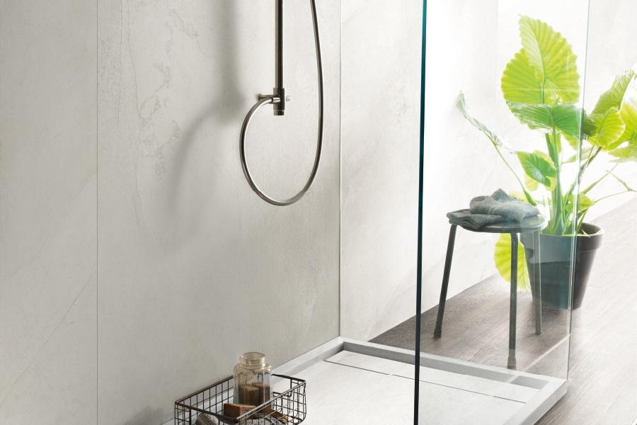 Piante in bagno: umidità